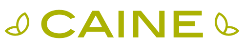 Caine Real Estate - logo