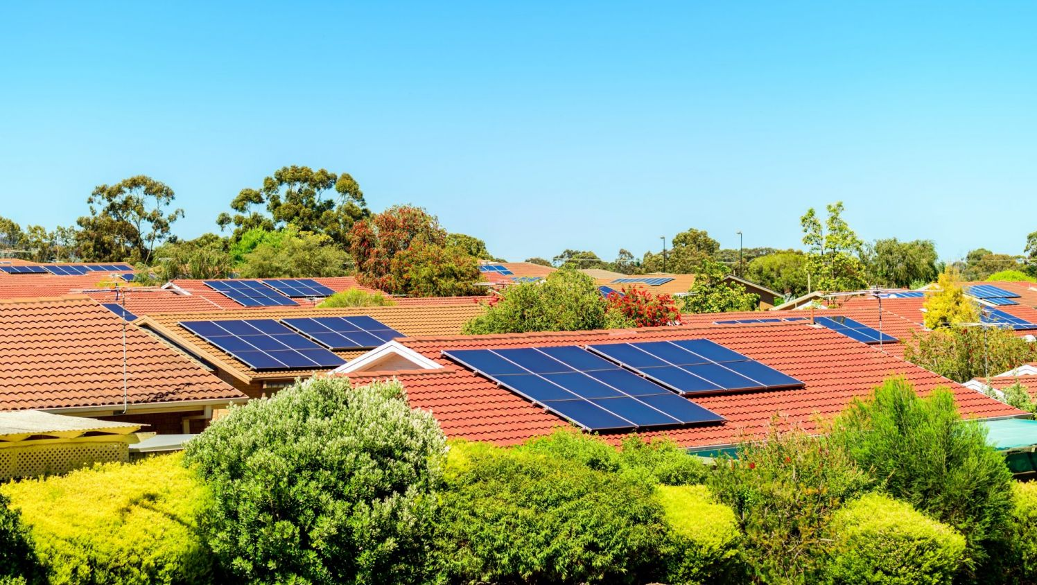 Greens call for cheap solar power for renters
